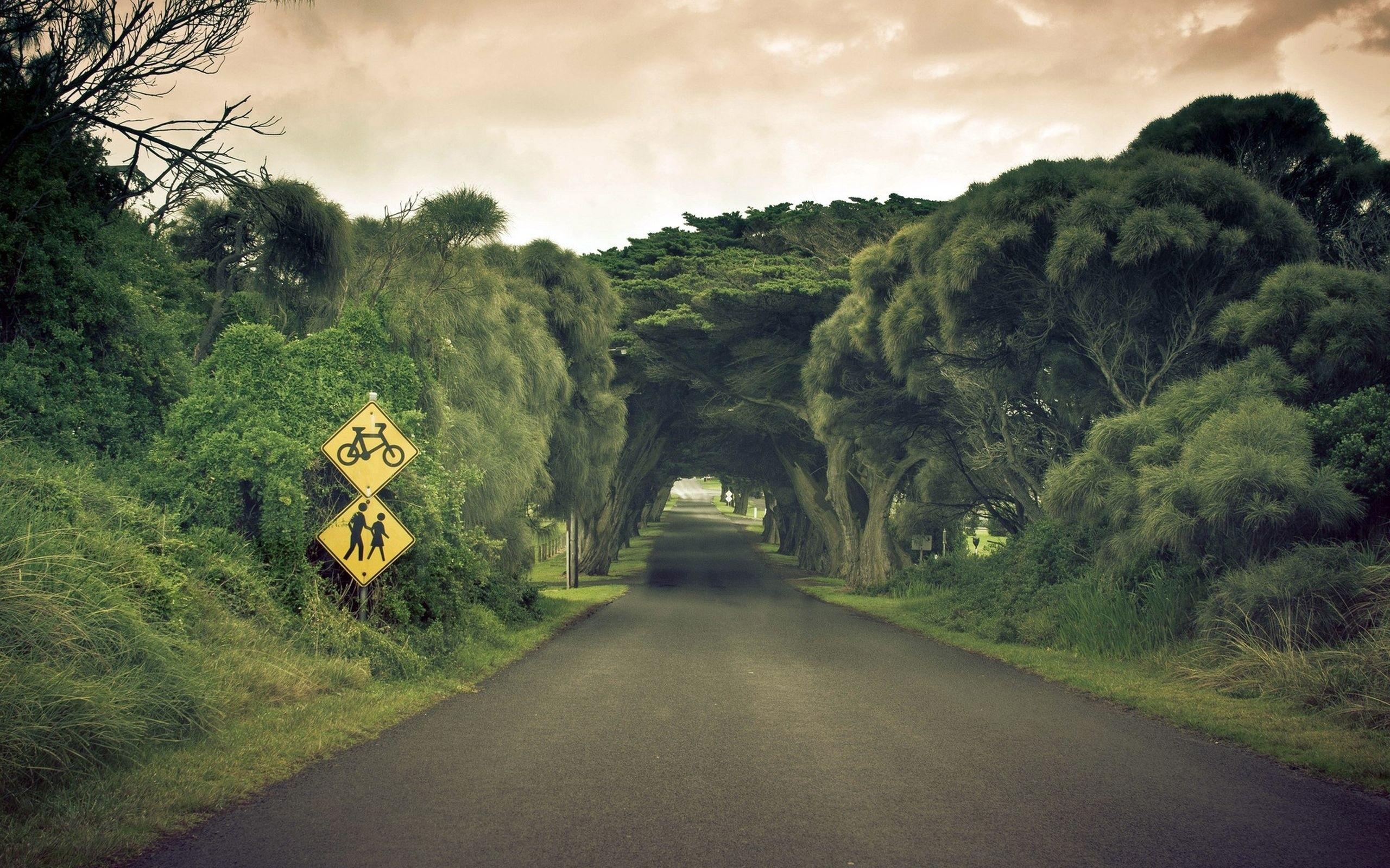 Дороги, по которым опасно ездить.