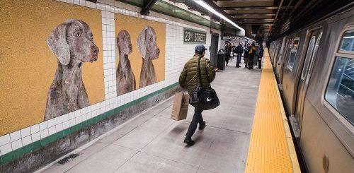 """Стены на станции метро в Нью-Йорке украсили мозаиками с изображением собак (13 фото)"""">"""