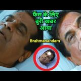 Bad News For The Fans of Brahmanandam | Brahmanandam latest video | Brahmanandam Latest News