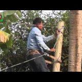 কুমিল্লা ও নাটোরে আলোর ফেরিওয়ালা কার্যক্রমে সাড়া | Alor Feriwala | Bangla Video News