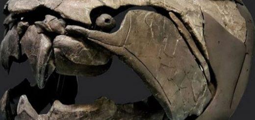 10 самых интересных фактов о древнейшем монстре - дунклеостее
