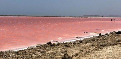 """Розовое море в Колумбии (3 фото)"""">"""