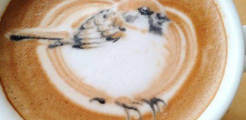 """Красочный латте-арт с птицами от талантливой японки, дома у которой живёт попугайчик (13 фото)"""">"""
