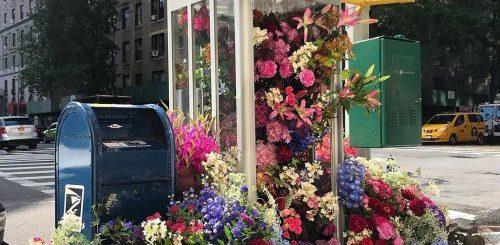 """Флорист превращает нью-йоркские телефонные будки в цветочные клумбы (11 фото)"""">"""