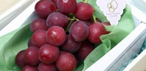 """Самый дорогой виноград в мире (5 фото)"""">"""