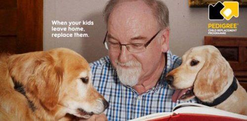 """Рекламная кампания показывает, как собака может изменить вашу жизнь (22 фото)"""">"""