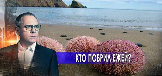 kto-pobril-ezhej-samye-shokirujushhie-gipotezy-s-igorem-prokopenko-29.10.2020