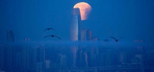Немного фотографий: вечерняя экскурсия по городам мира (12 фото)