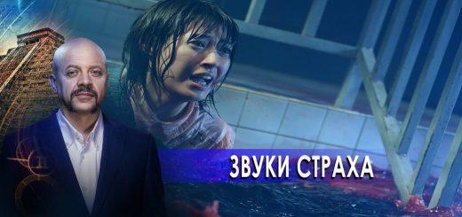 zvuki-straha-zagadki-chelovechestva-s-olegom-shishkinym-26.11.20