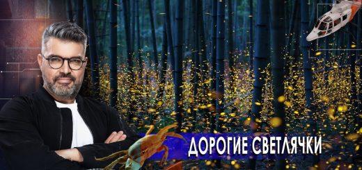 sokrushitelnaja-armata-tretij-glaz-dorogie-svetljachki.-znaete-li-vy-chto-02.02.2021