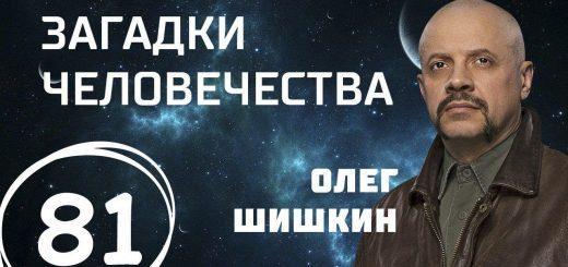 besshumnyj-avtomat.-jenergeticheskoe-chudo.-son-dlinoju-v-zhizn.-vypusk-81-07.11.2017