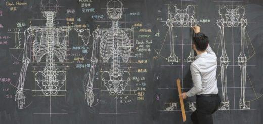 Преподаватель университета набирает популярность в соцсетях благодаря своим безумно подробным рисункам на доске (7 фото)