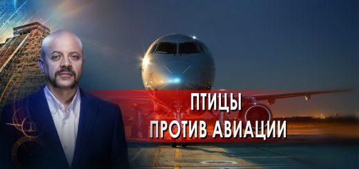 pticy-protiv-aviacii-zagadki-chelovechestva-s-olegom-shishkinym-01.10.21